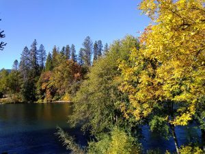 Rogue River in Fall