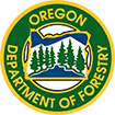 Forest Patrol Assessment