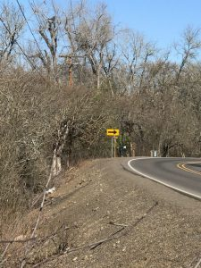 ODOT to trim along Hwy 62 scheduled for 4/6-4/9