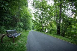 Must Remain on Paved Areas on Greenway in County Now